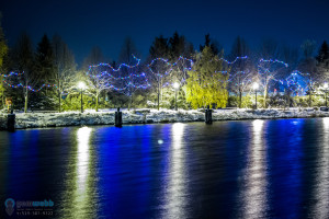 river winter lights